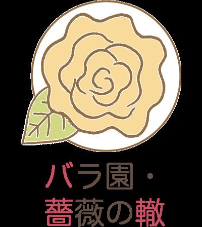 バラ園・薔薇の轍